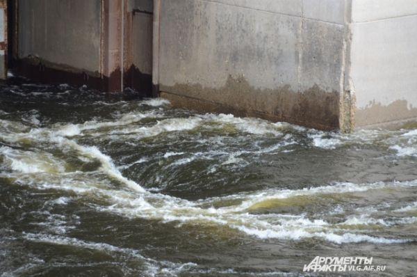 Многие считают, что из-за ГЭС значительно снизилось количество рыбы Волги. Сторонники этой точки зрения говорят, что плотина Волжской ГЭС, являющейся нижней ступенью каскада, перекрыла путь на нерест проходным рыбам Каспийского моря. Однако специалисты напоминают о браконьерстве и ухудшении экологической обстановки, которые на пользу рыбе не пошли.