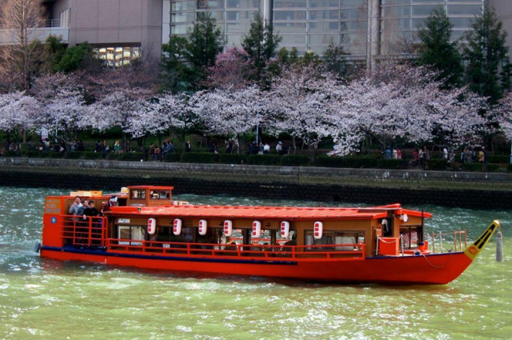 Водные прогулки вдоль цветущих садов пользуются популярностью и у японцев, и у гостей страны.