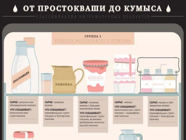 Доклад бактерии в продуктах питания 1225