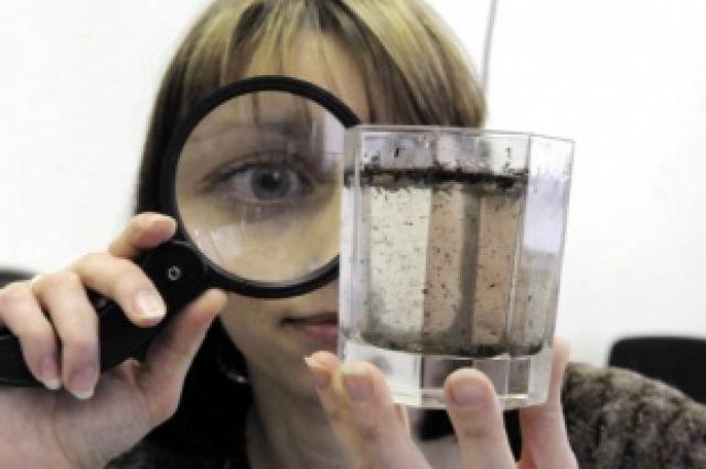Содержание цианида в Южноуральском водохранилище оказалось выше нормы