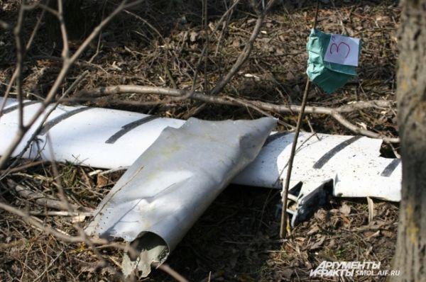 Фрагменты обшивки самолета.