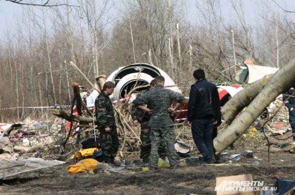 Завал из веток деревьев у носовой части самолета.