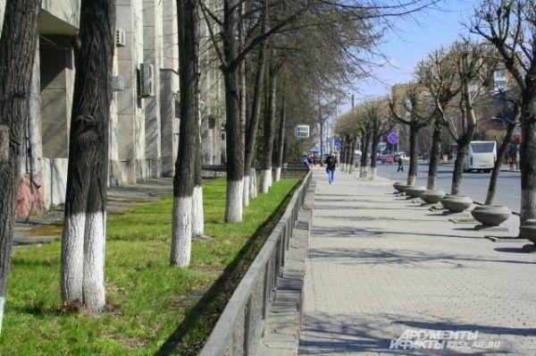 Первая зелень на газонах города уже радует глаз.