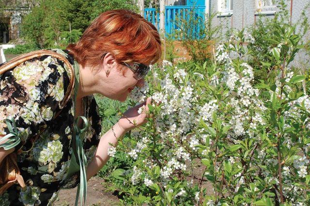 Будьте осторожны - пыльца растений может быть опасной!