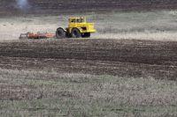 Планируется произвести 683 тысячи тонн зерна.