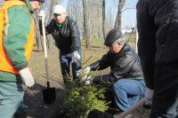 Омичи будут садить деревья 26 апреля.