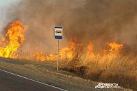 Лесные пожары вышли вплотную к дорогам Приморья.