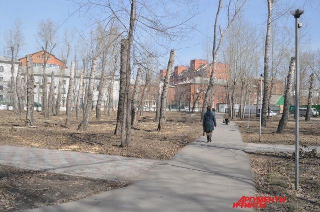 В Омске будут облагораживать парки.