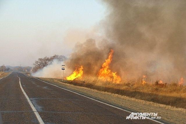 Пока депутаты спорят - огонь подбирается к населённым пунктам в Приморье.