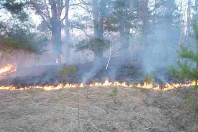 В настоящее время в Зиминском районе действуют два крупных лесных пожаров.