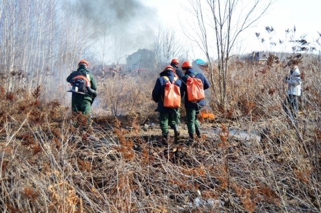 Большинство лесных пожаров в Приангарье происходит по вине местного населения.