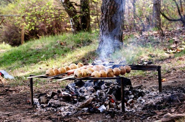 Отдых на природе спровоцировал множетсво лесных пожаров в лесах Приангарья на прошлой неделе.