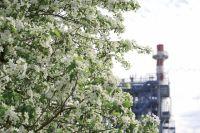 На заводе применяют эффективные технологии, которые берегут окружающую среду.