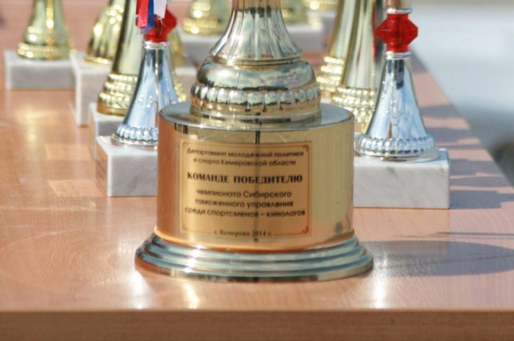 Чтобы получить кубок победителя, предстояло преодолеть 5 этапов соревнований.