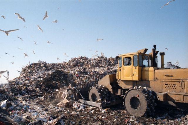 В Омске горит свалка бытовых отходов.