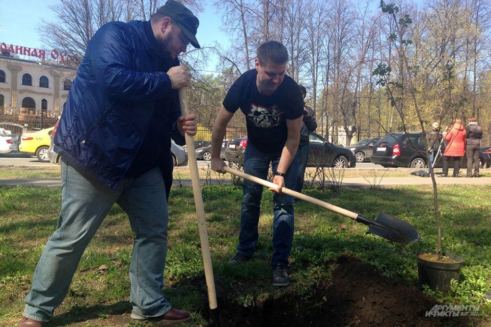 Шеф-редактор АиФ.ru Владимир Шушкин и директор по развитию цифрового направления «АиФ» Денис Халаимов копают лунку под будущее дерево.