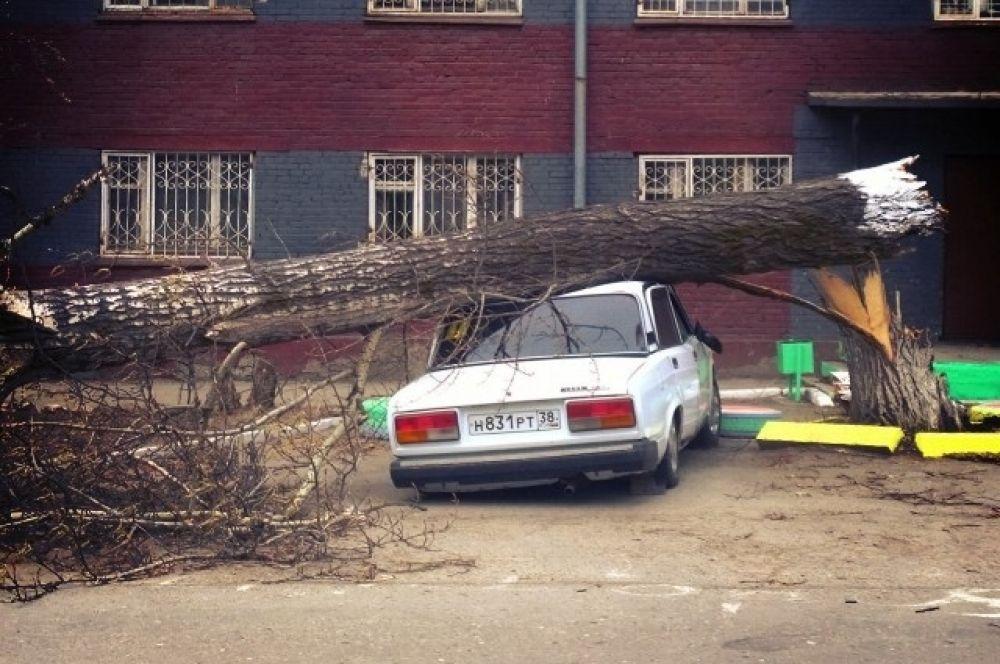 Серьезные повреждения получили и машины. На улице Игошина тополь упал на Жигули.