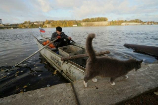 запрет на ловлю рыбы в ульяновской области