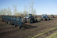 85% посевных земель отводится для производства зерновых культур.