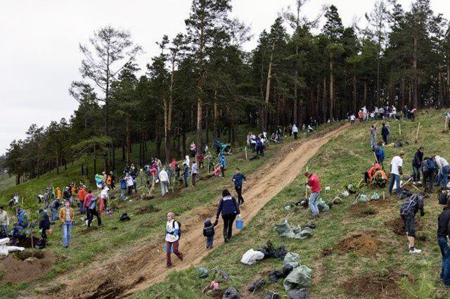 Иркутяне всё более ответственно относятся к городским рощам и лесам.