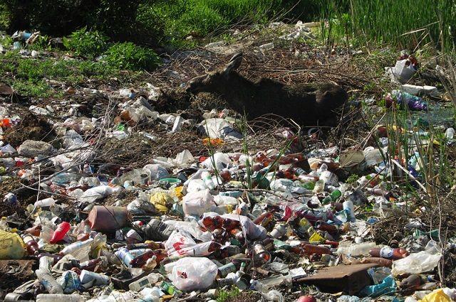 После туристов на Ольхоне остается много мусора.