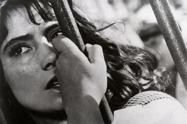 В картине «Летят журавли» Михаила Калатозова Самойлова сыграла недавнюю школьницу, потерявшую во время Великой Отечественной войны родителей и жениха. Фильм был принят Каннским кинофестивалем и в 1958 году получил главный приз – Золотую пальмовую ветвь.