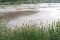 Без больших дождей реки начнут пересыхать.