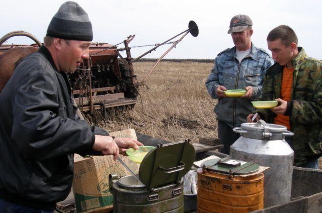 Добросовестные комбайнёры и сельхозработники