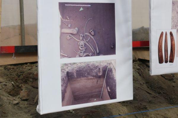 Предполагается, что площадь раскопок Афонтовой горы в 2014 году составит около 11 тыс. квадратных метров.