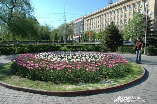 Ежегодно из бюджета выделяются деньги на обустройство клумб в Волгограде.