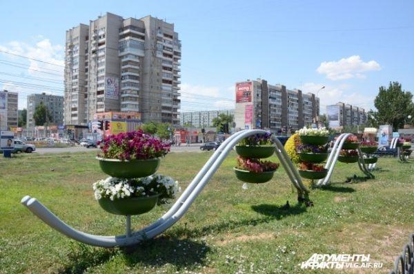 Цветочные клумбы появляются в разных местах Волгограда.