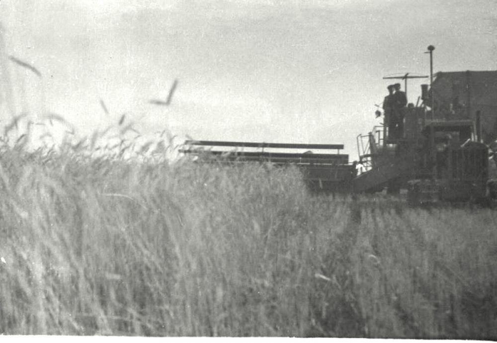 Комбайн на полях колхоза.