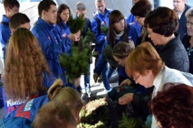 13 мая в Челябинске горожанам раздадут саженцы хвойных деревьев