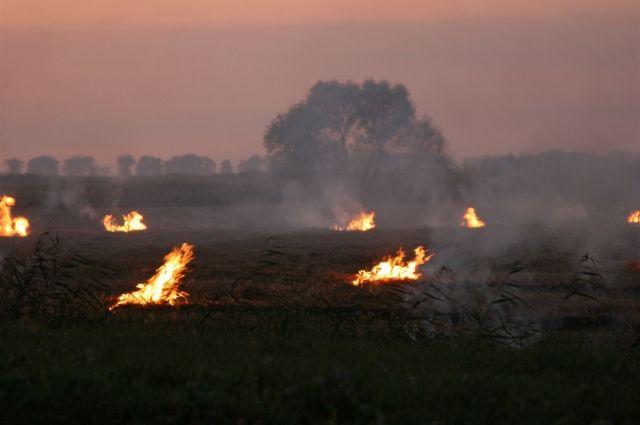 В Приангарье установились II-Y классы пожарной опасности.