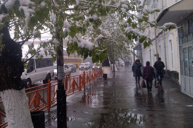 Майский снег в Сибири – явление обычное, но «обидное», особенно после жарких дней.