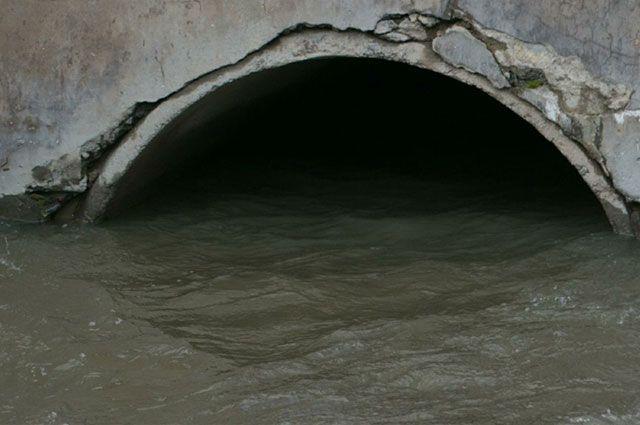 Ущерб окружающей среде Росприроднадзор оценил более чем в 120 млн руб.
