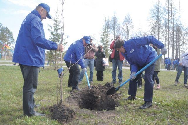 В 2014 году запланировано посадить не менее 3 млн деревьев.