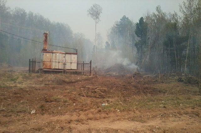 Крупное возгорание в поселке Дальний началось с лесного пожара.