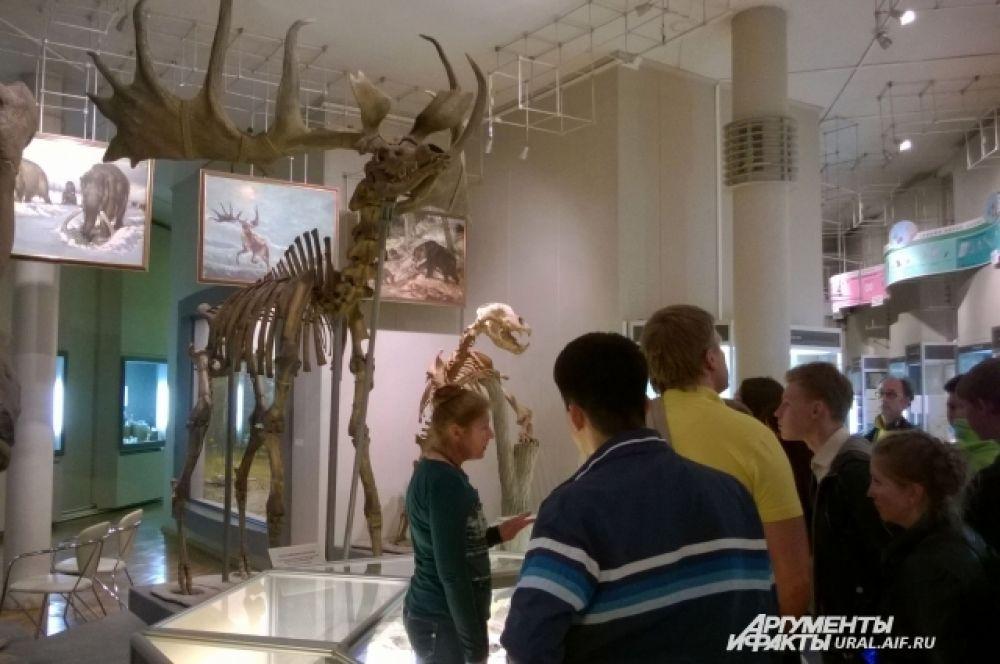 В Музее природы гостям демонстрировали  впечатляющие скелеты вымерших исполинских животных ледникового периода.
