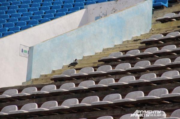 В 1994 году на Центральный стадион пожаловал знаменитый «Манчестер Юнайтед».