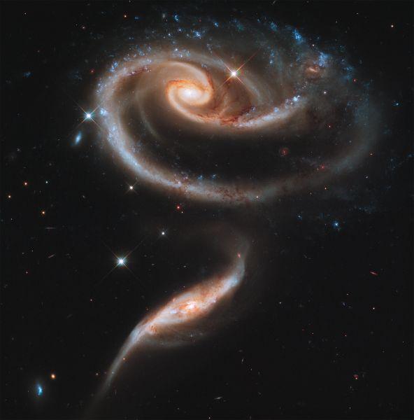 Группа галактик в созвездии Андромеды, 300 млн световых лет от Земли. Составляющая розоподобную форму галактика UGC 1810 затягивает гравитацией галактику-спутник UGC 1813. Впервые была описана в 1966 году. Снимок телескопа «Хаббл».