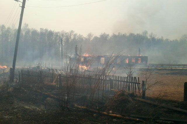 Без жилья из-за лесного пожара остались более 50 человек.