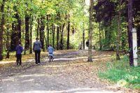 В 182 раза завысили стоимость лесного массива в парке Революции им. 1905 года.