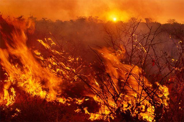 Из-за пожаров в некоторых районах Приангарья действует режим ЧС.