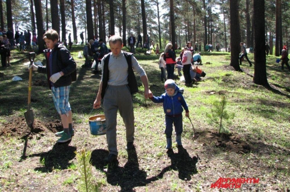 Акция собрала большое количество иркутян. Сажать сосны приходили целыми семьями.