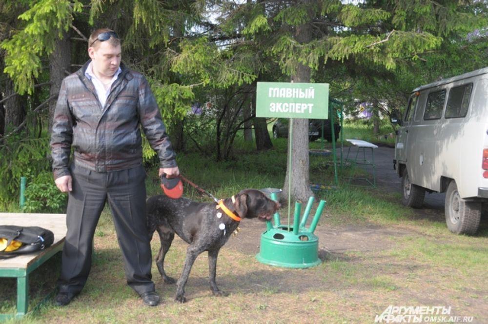 Выставка охотничьих собак.
