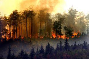 Ждут пожары потопы и землетрясения