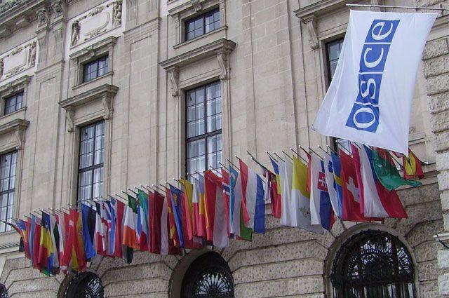 Организация по безопасности и сотрудничеству в Европе (ОБСЕ)