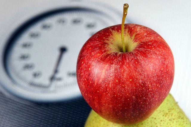 японская система питания которая поможет снизить вес йорка