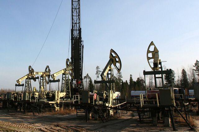 На границе Свердловской области нашли крупное месторождение нефти
